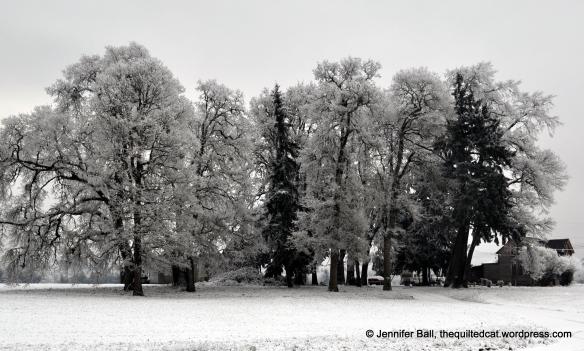 Barn in Frozen Landscape