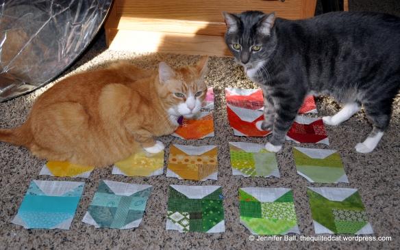 Quilt Inspector Duo