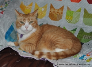Tiger Likes the Cat Quilt!