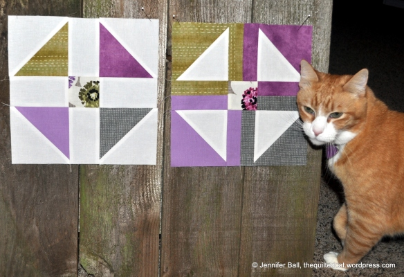 Cat Inspector with Jan Vice Versa Blocks