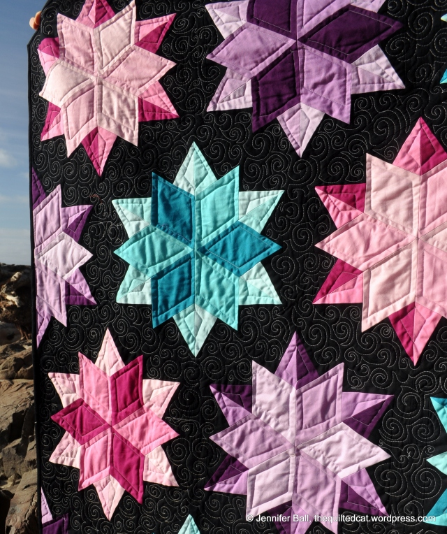 Night Sky Quilting Detail