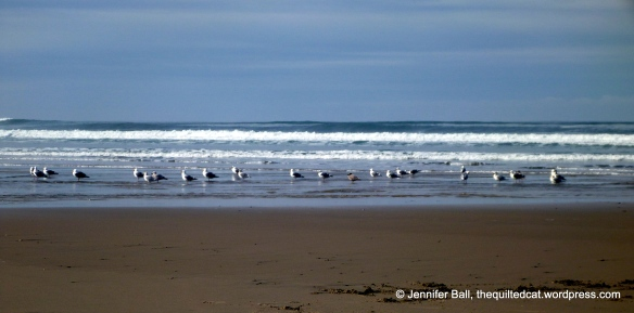 Seagulls at the Oregon Coast in February