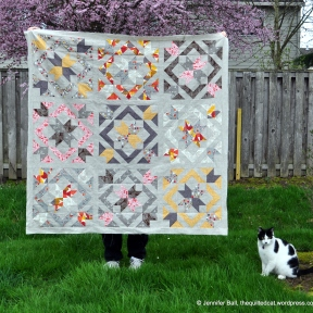 SLSB QAL Quilt Top Outside with Cat Inspector