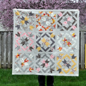 STSB QAL Quilt Top, Outside