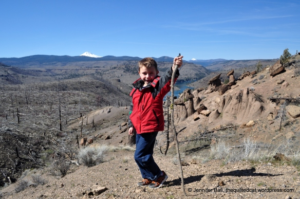 A Kid-Friendly Hike