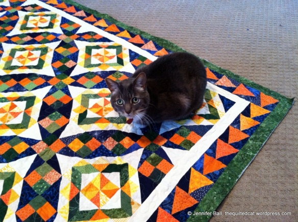 Romeo inspects my Celtic Solstice quilt (before binding)