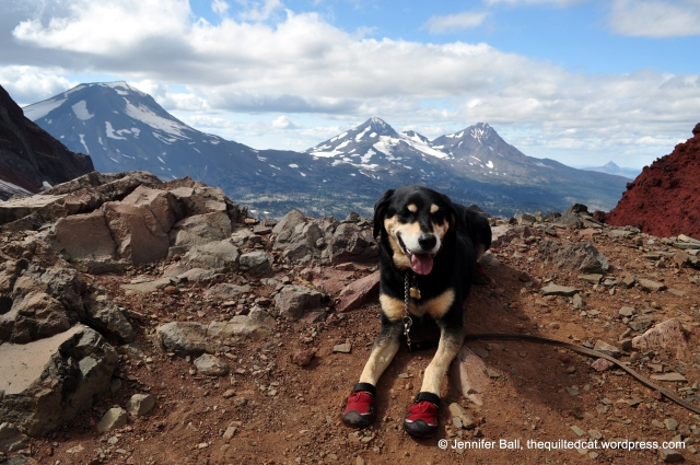 Broken Top Hike with View of the Three Sisters (and Brutus the dog)