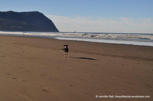 Brutus at Seaside, Oregon