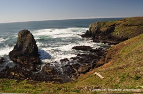 Near Yaquina Head