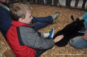 Black Bear Cub named Bonnie