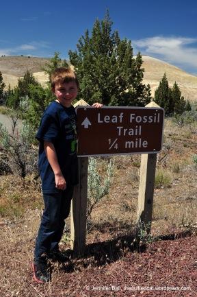 Leaf Fossil Trail, age 10