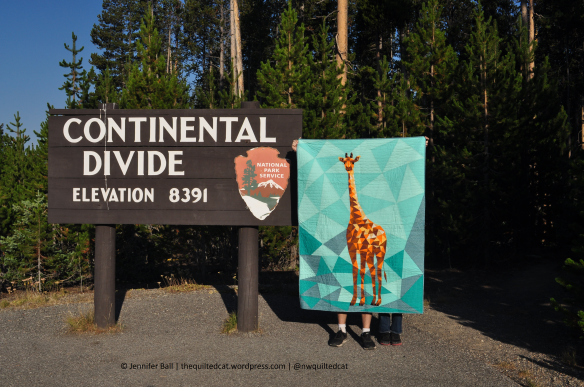 Giraffe at Continental Divide, Yellowstone NP