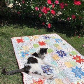 Quilt inspector on Catalina Stars
