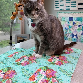 Romeo inspects my quilting